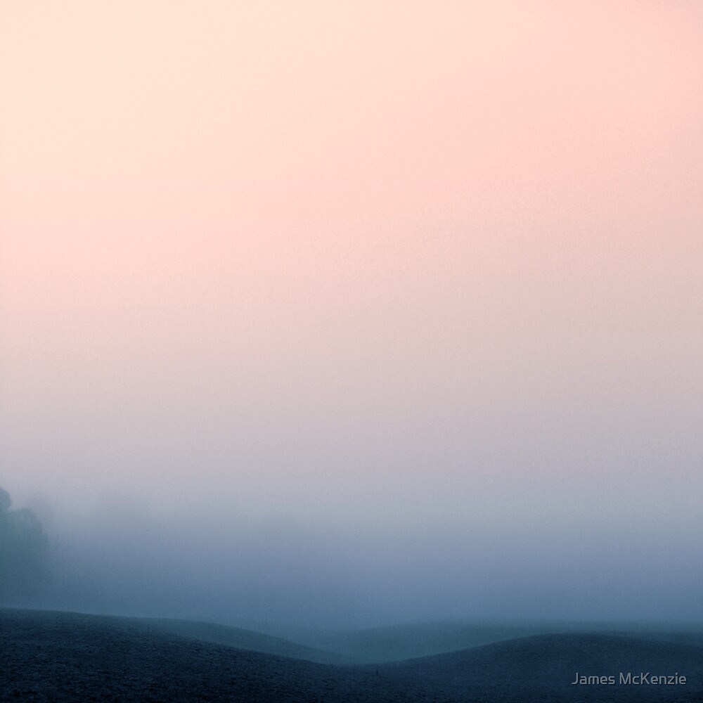 Hidden in the Mist by James McKenzie