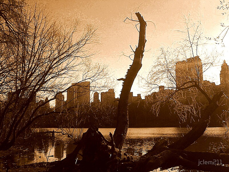central park view by jclem211