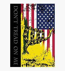American Gadsden Flag Worn Photographic Print
