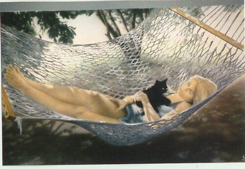 hammock by ChadClark