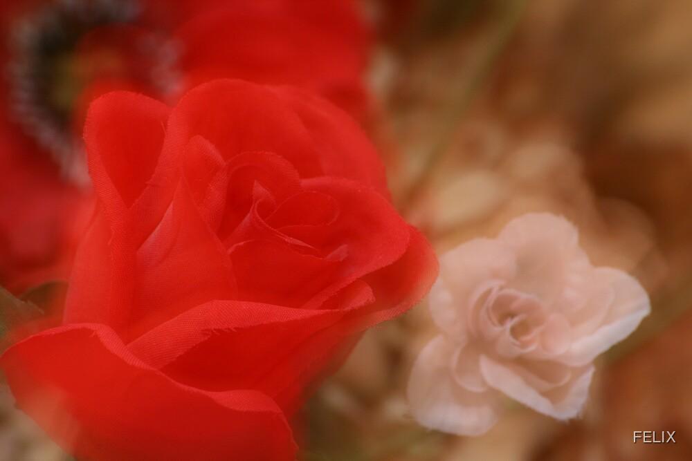 Fake Rose by FELIX