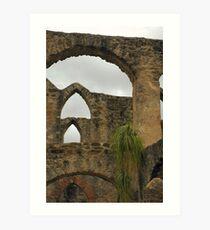 Arches At San Jose Art Print