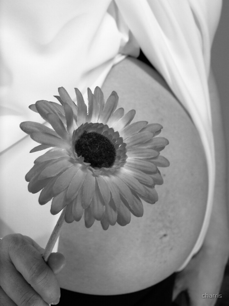 Belly and Flowers by charris