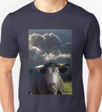 Bull before the Storm T-Shirt