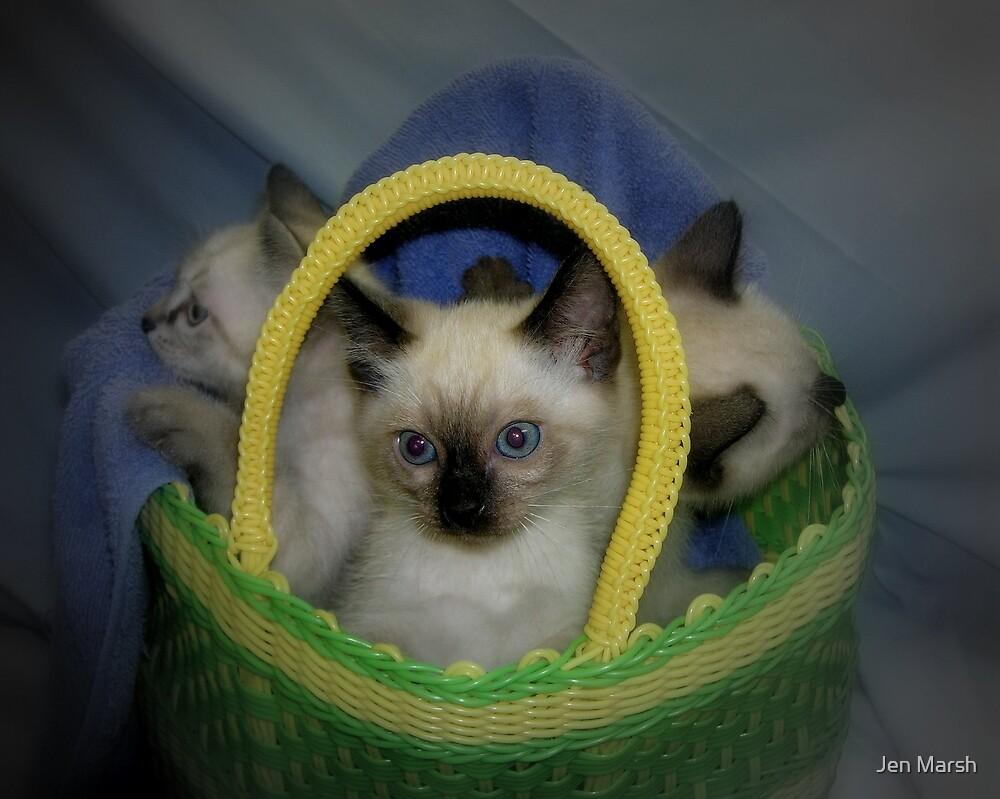 Basket of Cute by Jen Marsh
