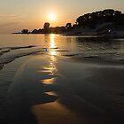 A Golden Path to Summer Fun - Lake Erie Beach Sunset by Georgia Mizuleva
