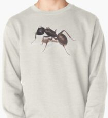Ant Pullover