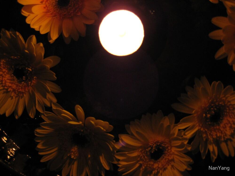 The 'Moon' by NanYang