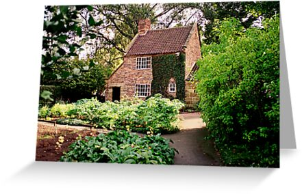 Captain Cook's Cottage     by Christine Wilson