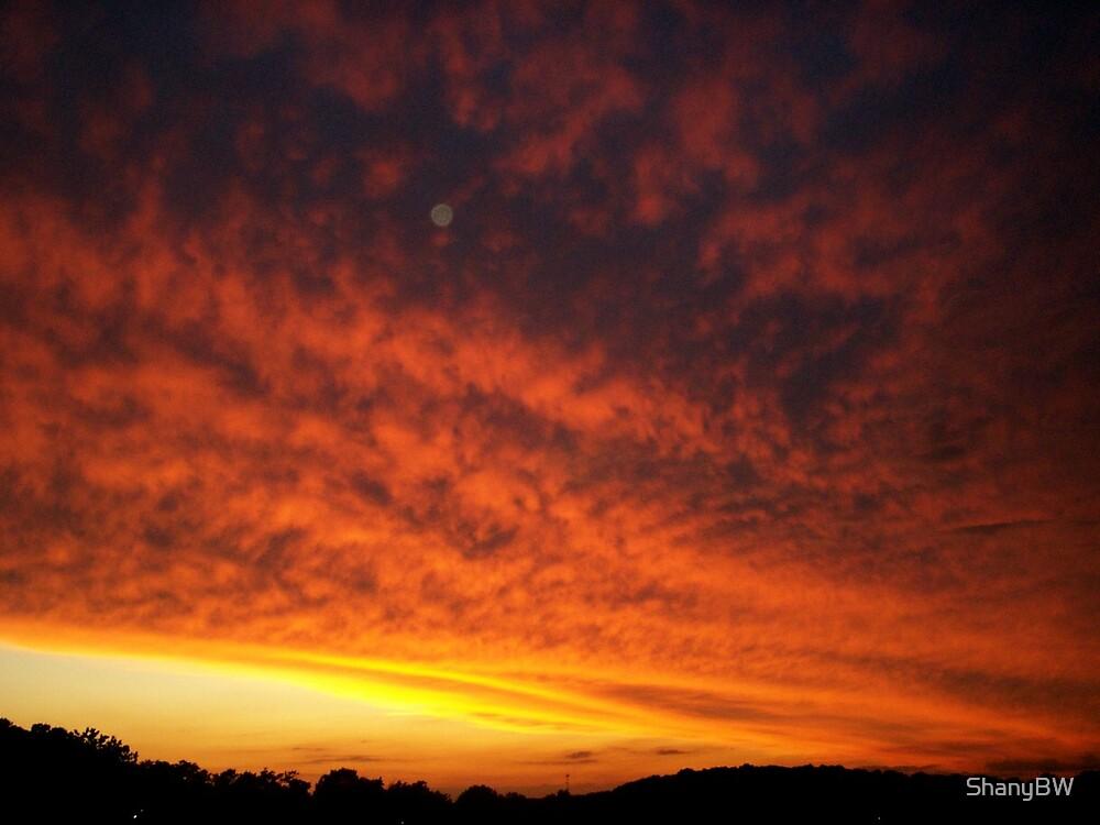 """Volcanic Skies"" by ShanyBW"