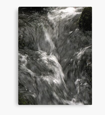 Silver flow Canvas Print