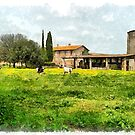 Farm with grazing cows by Giuseppe Cocco