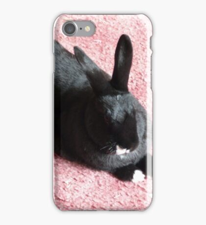 Relaxing in the sun iPhone Case/Skin