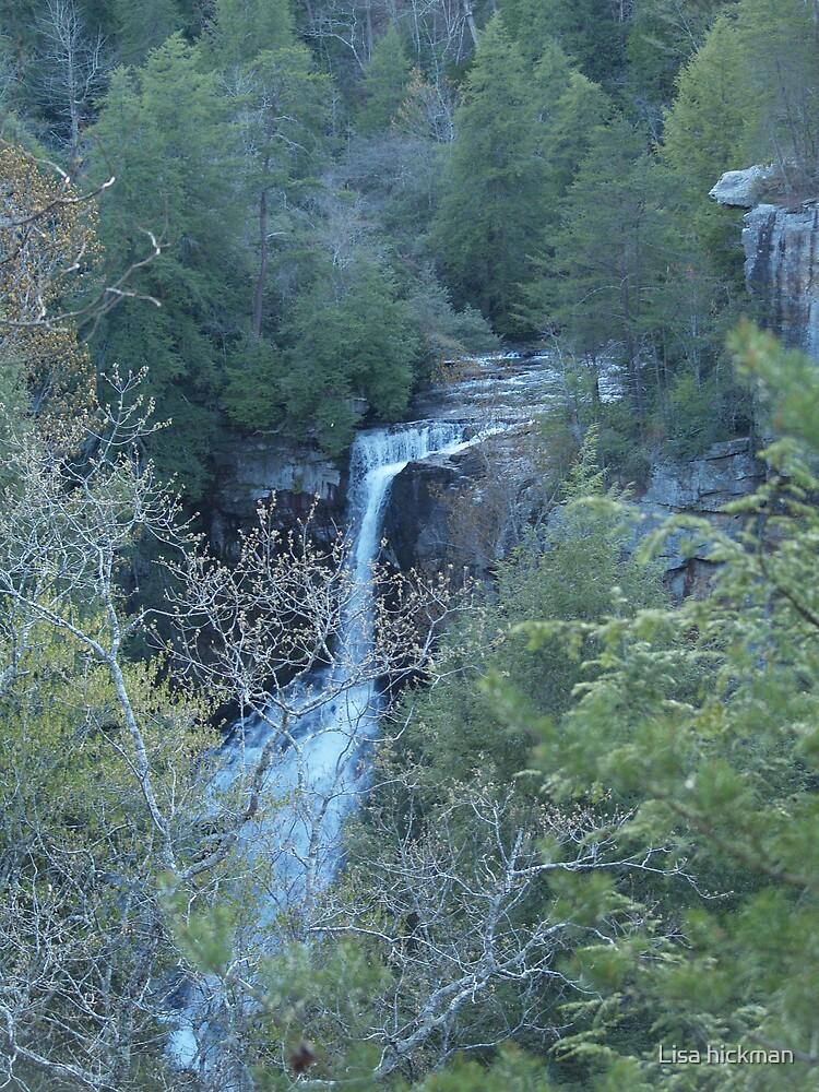 fall creek falls by Lisa hickman