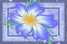 Pretty Blue Flowers by inkedsandra