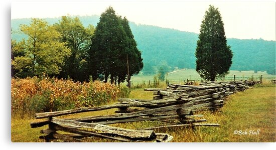 """""""Alabama Fence line""""... prints and products by Bob Hall©"""