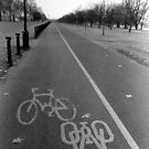 Cycle Lane in Hyde Park by John Violet