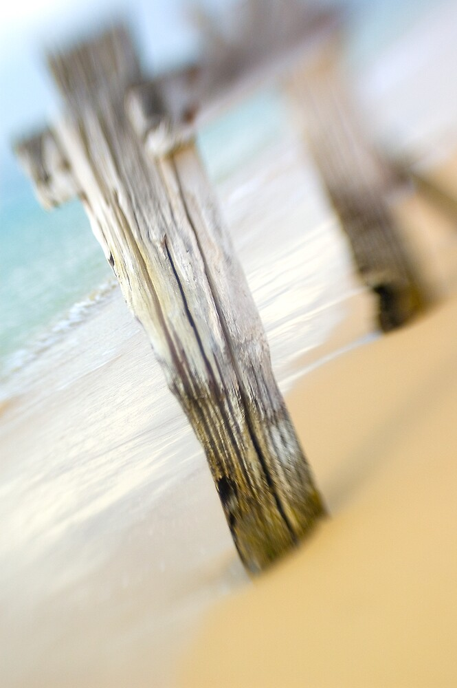 Sea Posts 2 by Sue Wickham