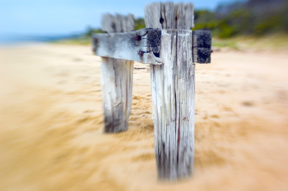 Sea Posts 3 by Sue Wickham