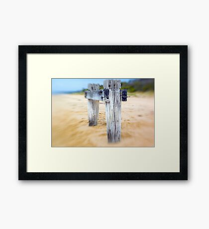 Sea Posts 3 Framed Print