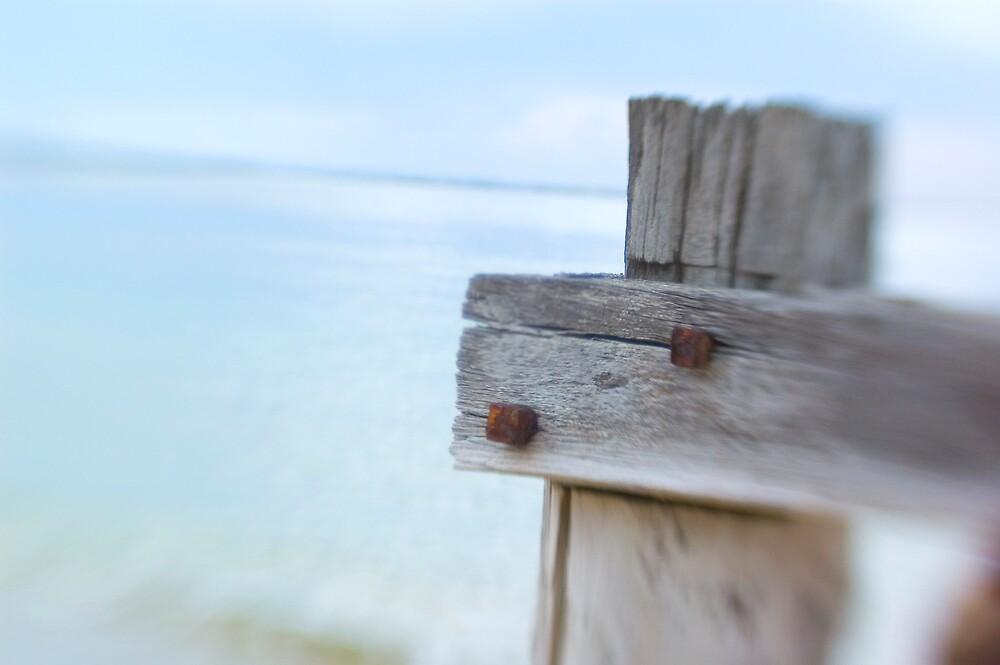 Sea Posts 4 by Sue Wickham