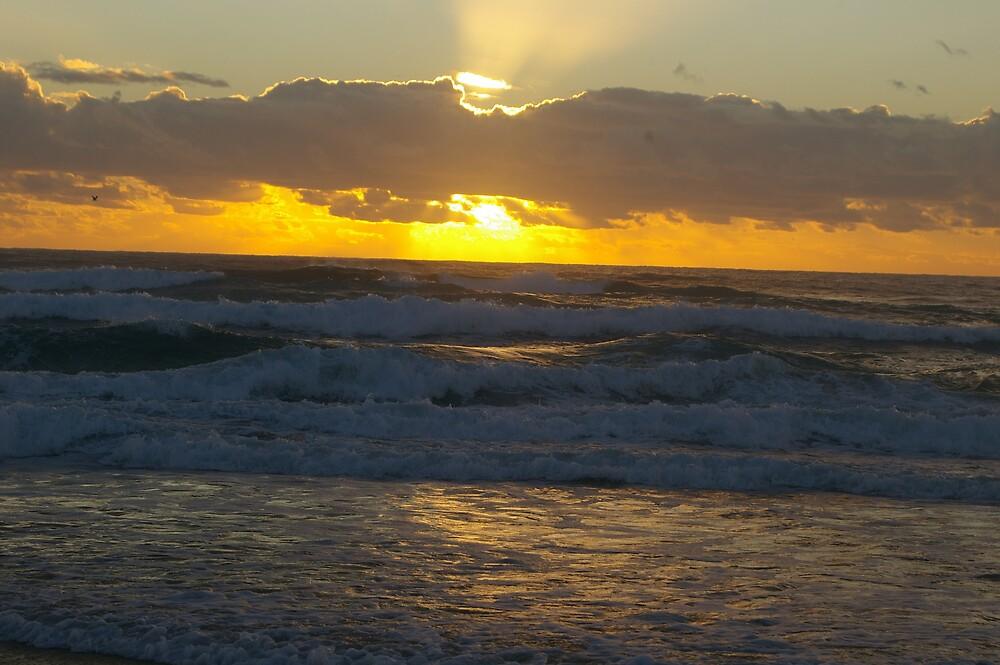 Beach sunrise by michael simms