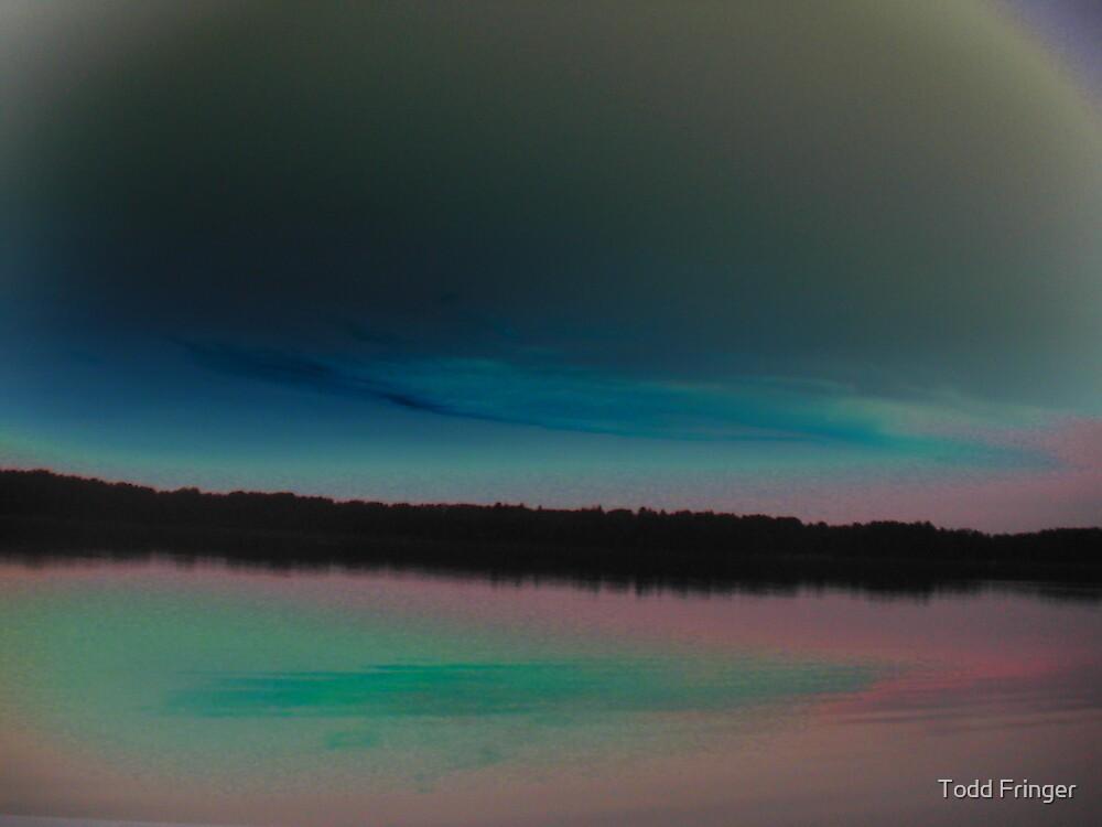 Landscape in BluePink by Todd Fringer