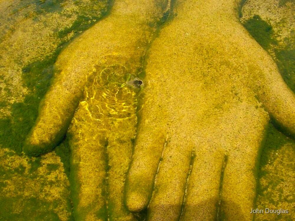 Hands by John Douglas