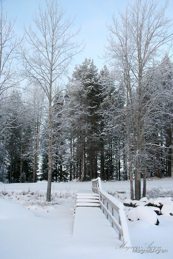 Snow Bridge by MagnusAgren