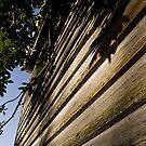 Weathered Wood by MagnusAgren