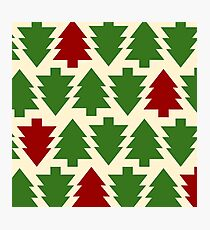 Pine Trees Texture Photographic Print