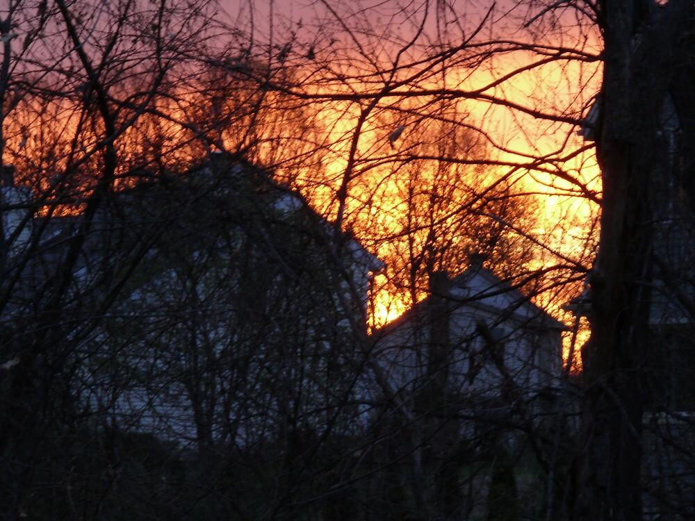 Spring evening sky by Nina Andrews