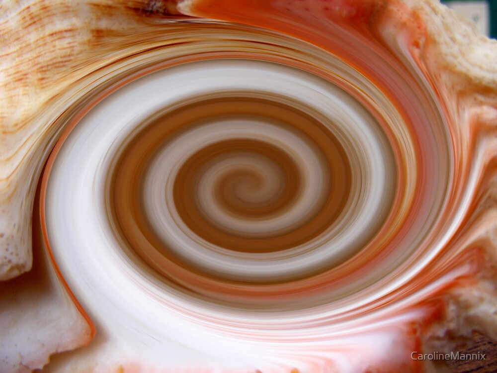 Shell Swirl by CarolineMannix