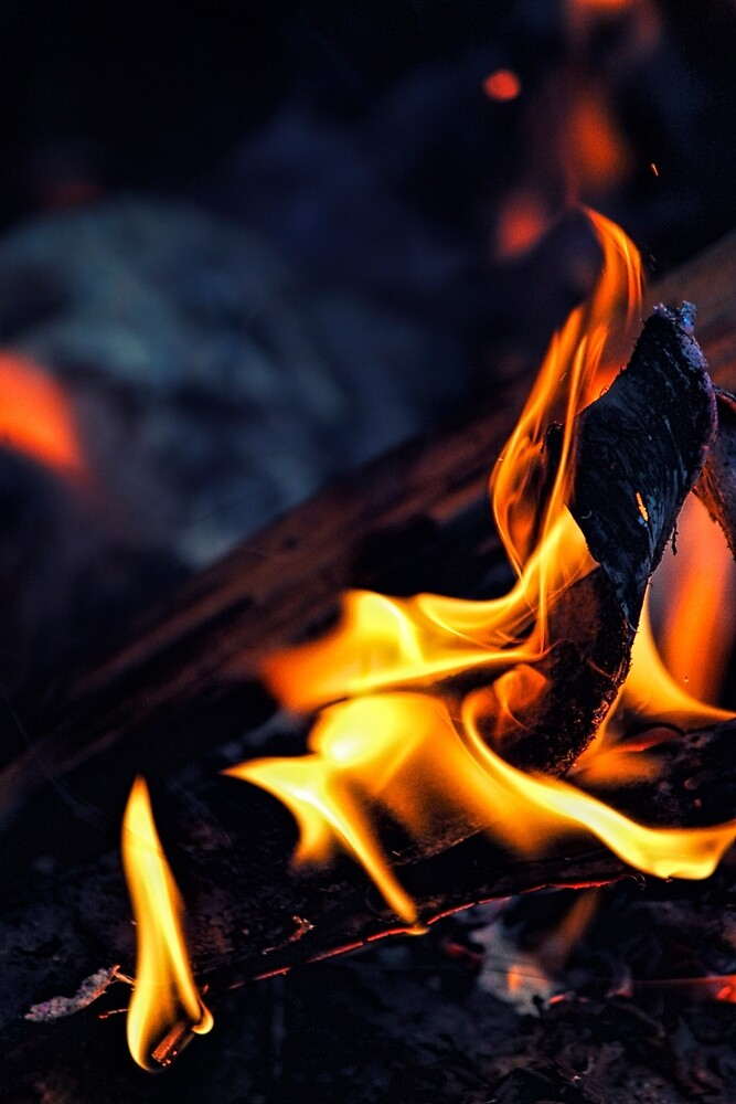 Midnight Fire by Vicki Field