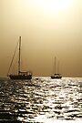 Airlie Beach, Queensland, Australia. by Andy Newman