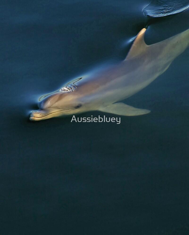 Dolphin. by Aussiebluey