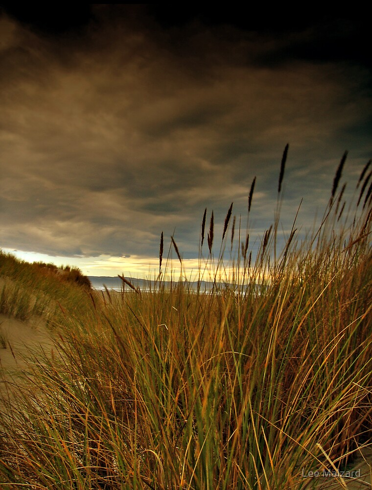 Brooding Vista by Lee Malzard