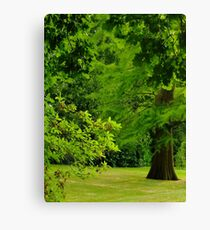Garden on The Hill Canvas Print