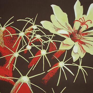 cactus flower by Carolyn