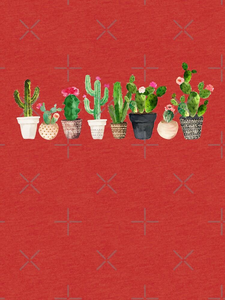Cactus de BekkaCampbell