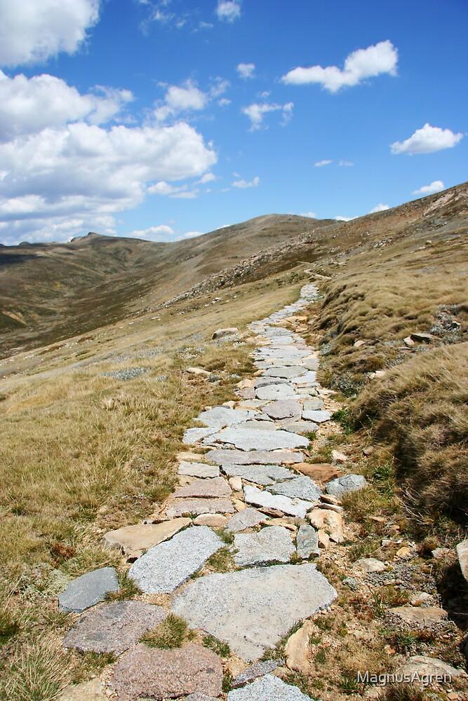 Mountain path by MagnusAgren