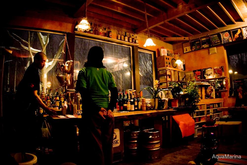 Fridge Door bar in Niseko by AquaMarina