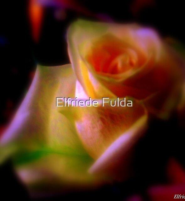 Happy Valentine's Day ! by Elfriede Fulda