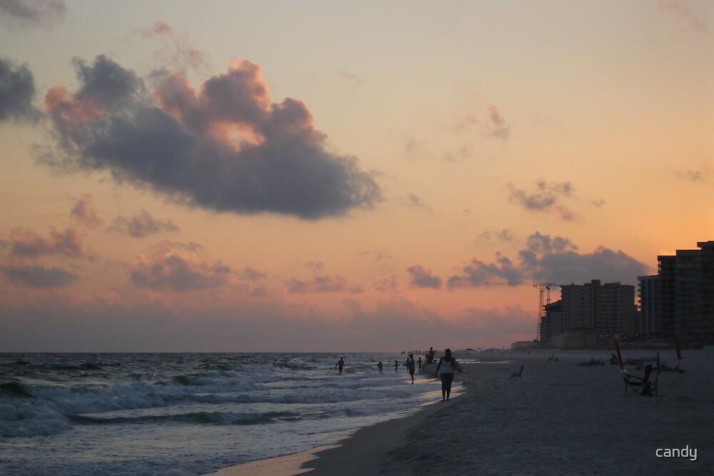 Sun Set On The Beach by candy