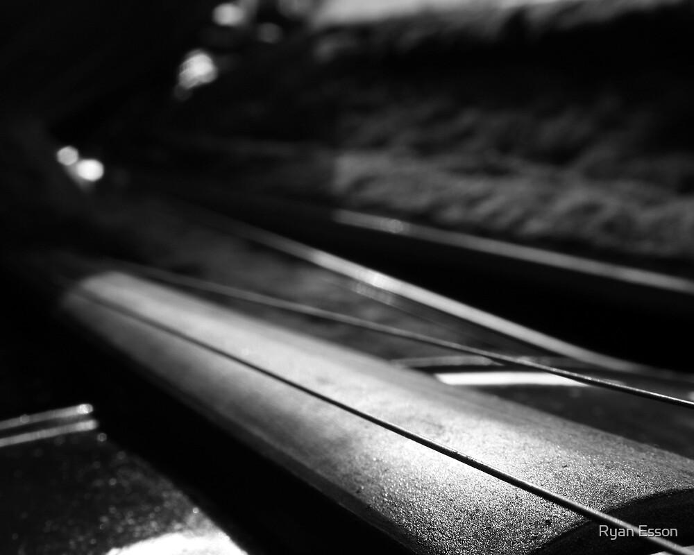 Violin Series 2 by Ryan Esson