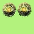 Barrel Cacti by DAdeSimone