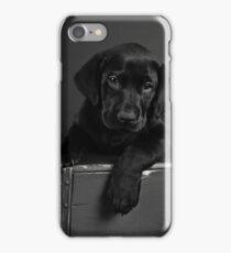 Jake's 7 week puppy iPhone Case/Skin