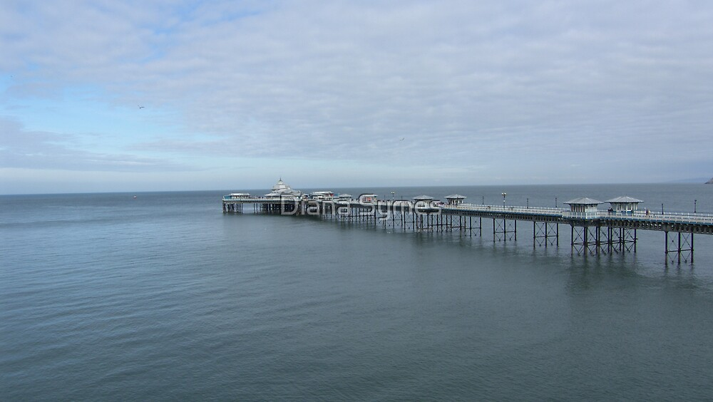 Pier by Diana Symes