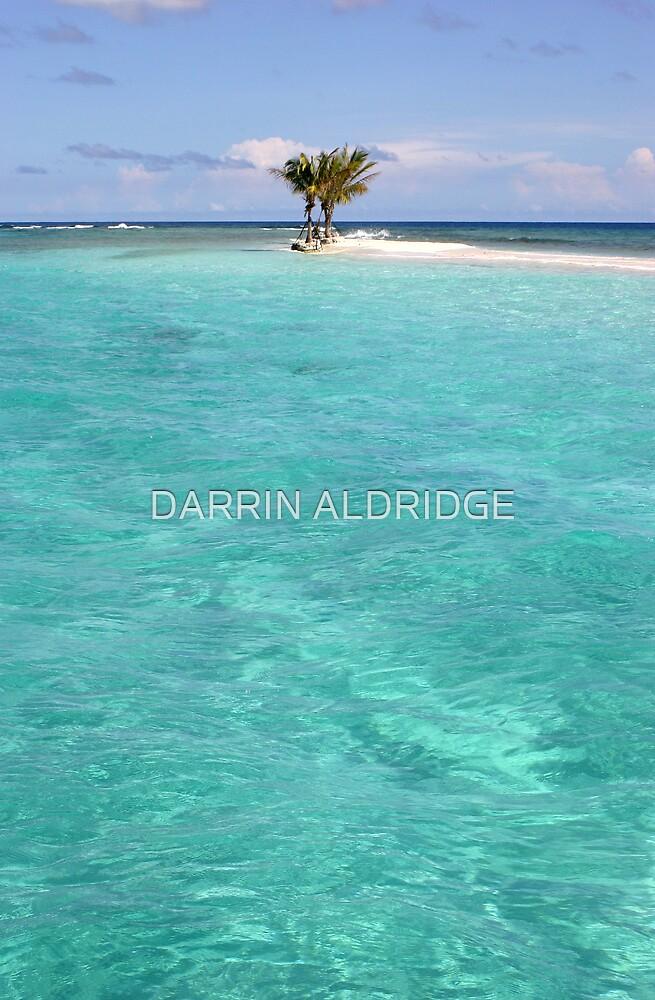 Three Palm Island 2 by DARRIN ALDRIDGE