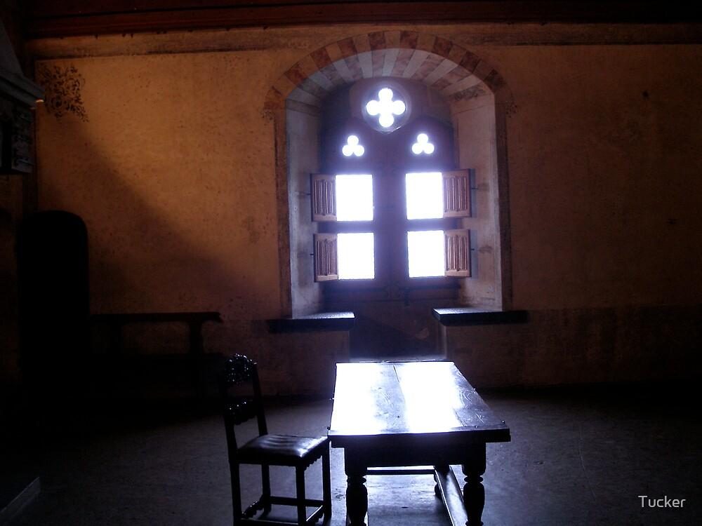 Inside a Castle by Tucker